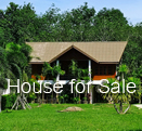 House for sale 1 rai, Aonang Krabi Thailand